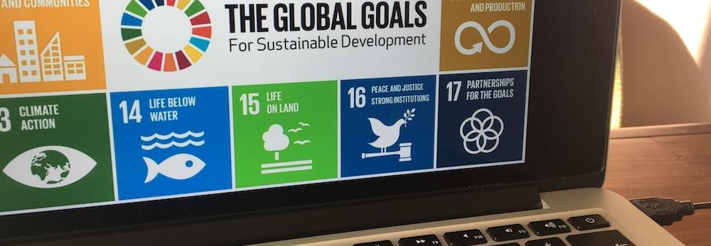 SDG Sparx MVO